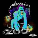 Electric Zoo 2012